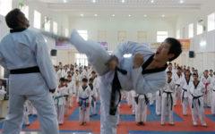 Tackling Taekwondo