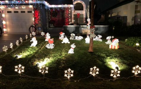 Christmas Spirit in the Streets